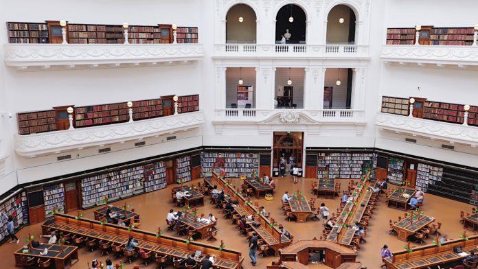 бизнес и университет
